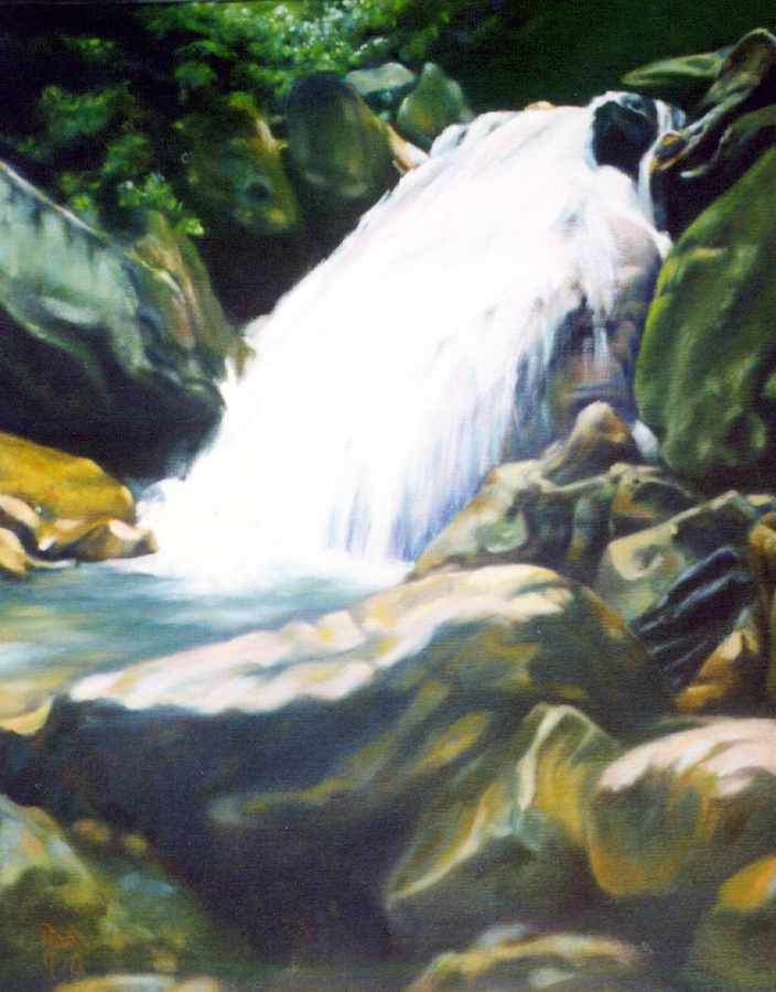 Waterfall on Blue Ridge