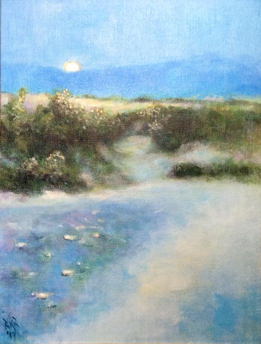 Desert Moon Set